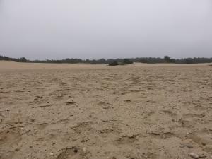 20160315 11.19 Hulshorster Zand rondje veluwe