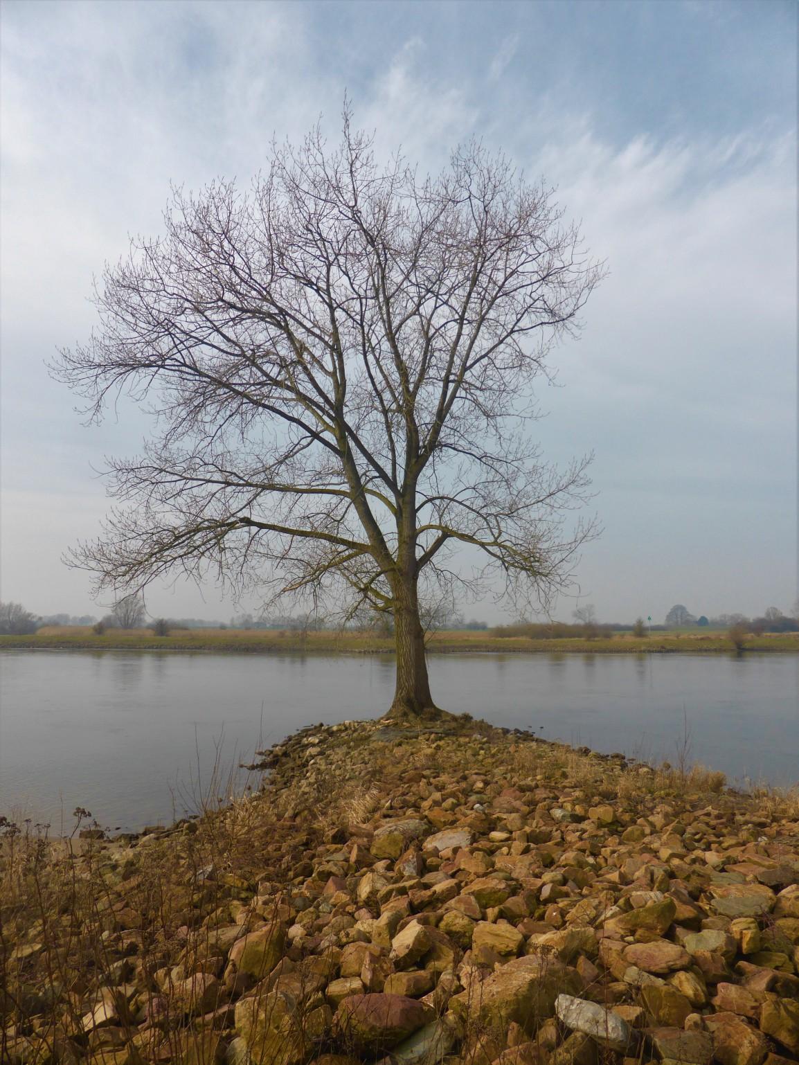 Geert Grootepad 5, Wijhe naarWindesheim
