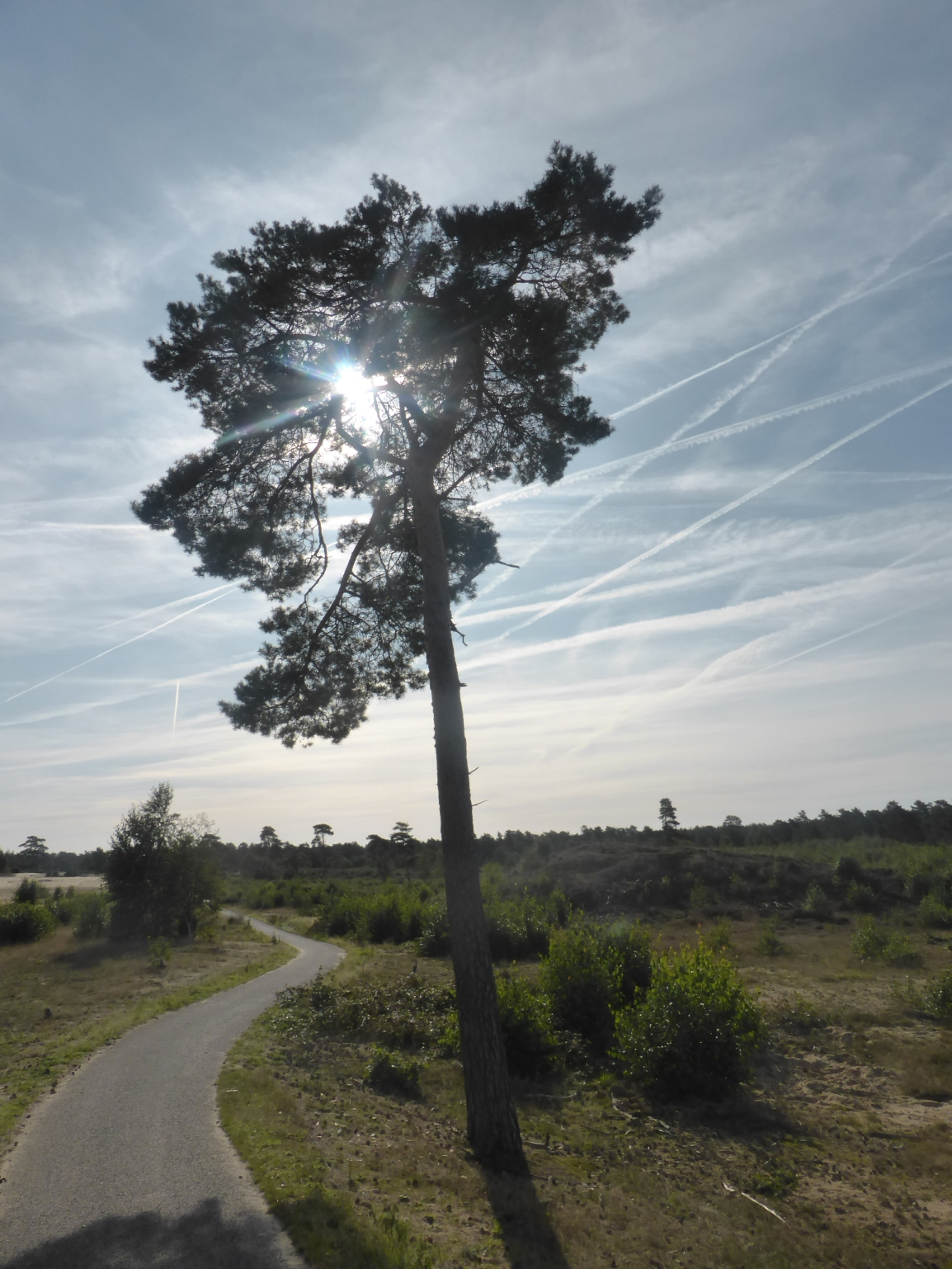 Groene Wissel 71:Harderwijk