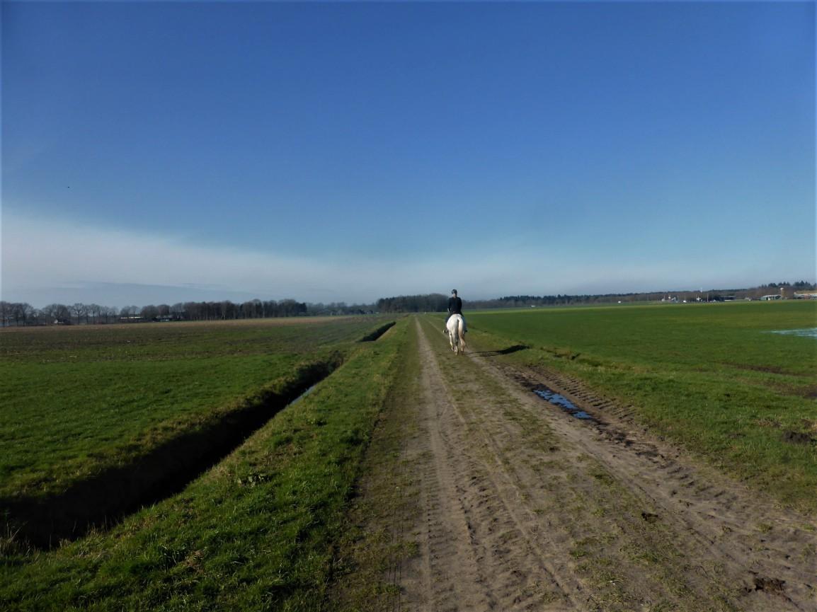 Groene Wissel 038 –Beilen